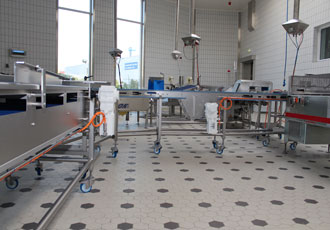 Stainless drives take over at fish processing plant