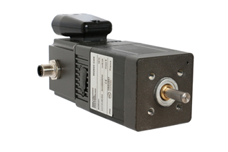 Networking capabilities for brushless DC motors