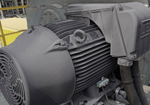 WEG supplies permanent magnet motor to Klabin